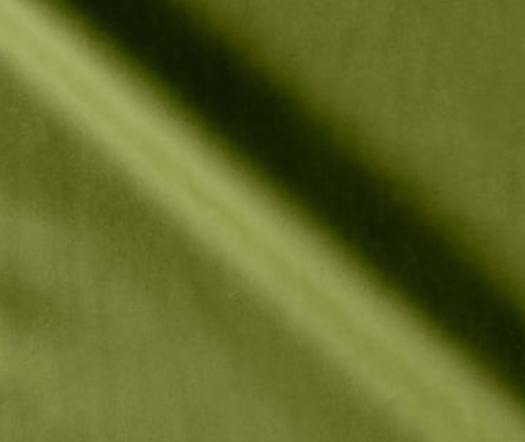 This is the luxurious green velvet that I chose for the upholstery from Fabric.com